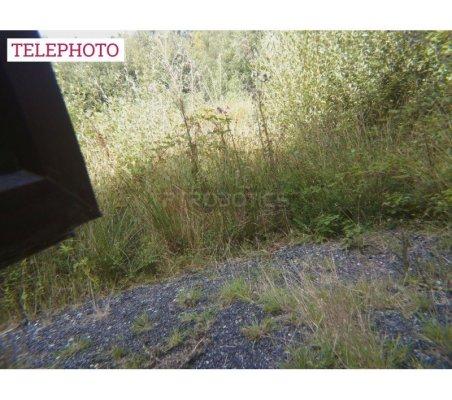 Magnetic Telephoto 2x Lens | Cameras Raspberry Pi | ModmyPi