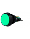 Interruptor de Pressão ON-(ON) SPDT 10A/250Vac - Verde | Push Button |