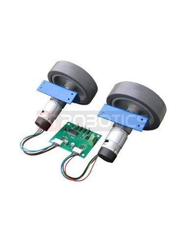 Devantech RD02 - 12v Robot drive | Motor DC com Engrenagens |