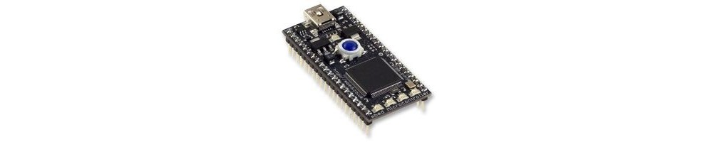 Microcontroladores | MBED | arduino | raspberry